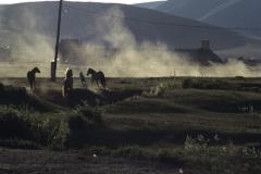 Staub und Pferde in Dschargalant im Tuw-Aimag